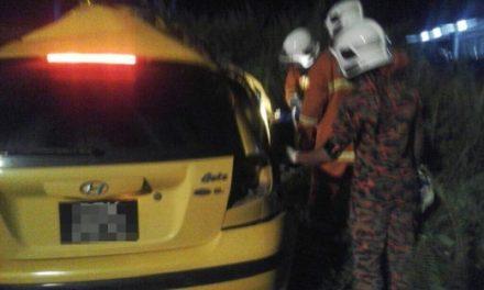 Wanita maut kereta rempuh pokok